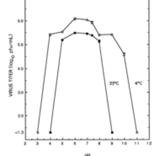 Graph nasus pharma taffix